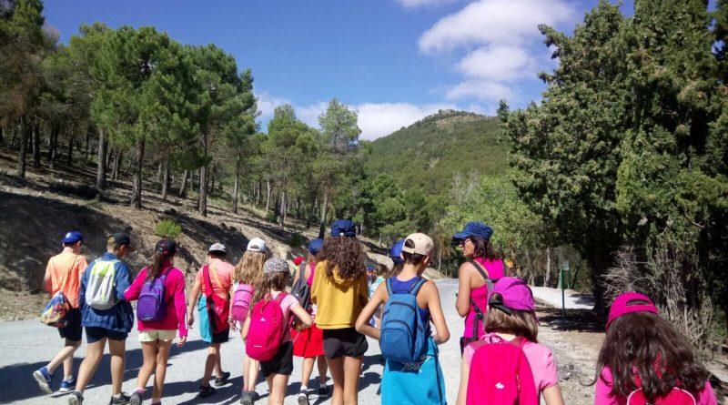Vegas del Genil se convierte en el primer pueblo que 'municipaliza' su antiguo grupo scout