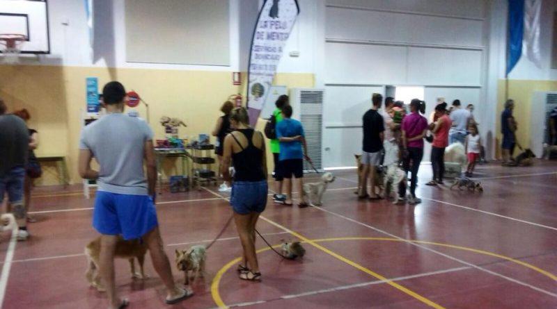 Vegas del Genil organiza una 'vacunación masiva' de perros y gatos a precios populares